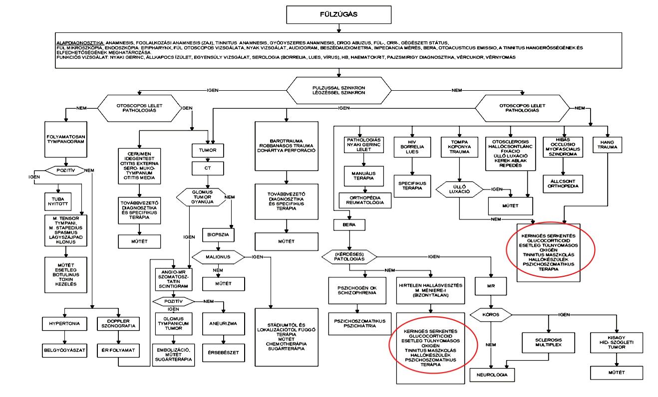 Fül Orr Gégészeti szakmai protokoll fülzúgás kezelésére